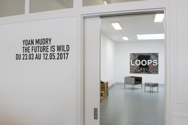 The Future is Wild, exhibition view, Art Bärtschi, Geneva, 2017